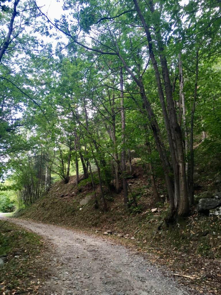Il Sentiero dei Gufi - Sempre pronta x partire