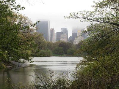 In un giorno di pioggia a Central Park