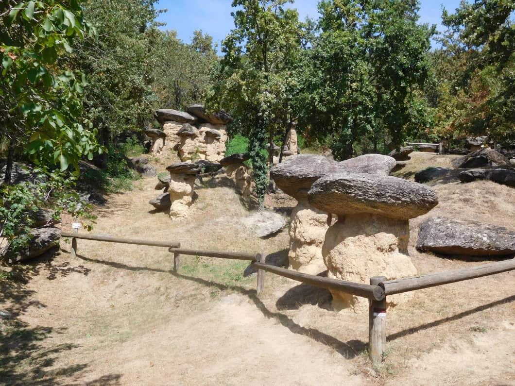 A caccia di Ciciu nella Riserva di Villar San Costanzo