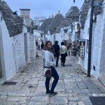 Ulivi, trulli e cultura: un tour tra Puglia e Basilicata